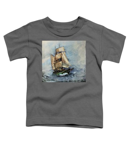 F 827 Asgard Storm Off Galway. Toddler T-Shirt