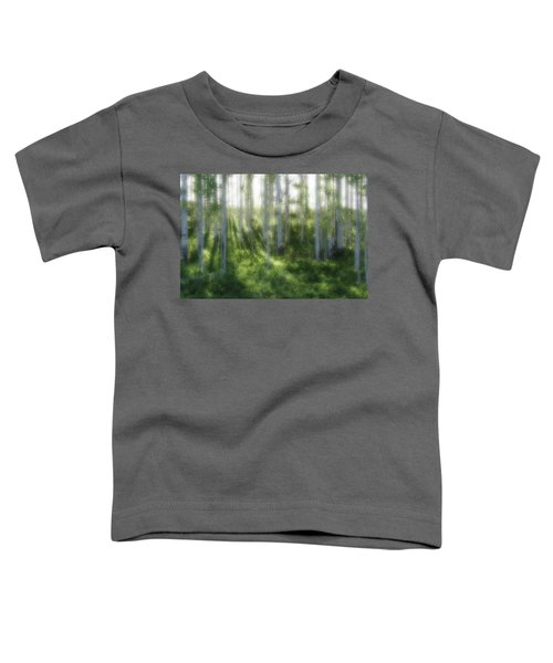 Aspen Morning 2 Toddler T-Shirt