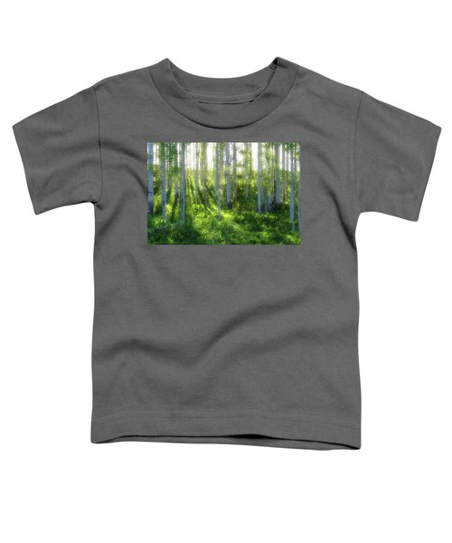 Aspen Morning 3 Toddler T-Shirt