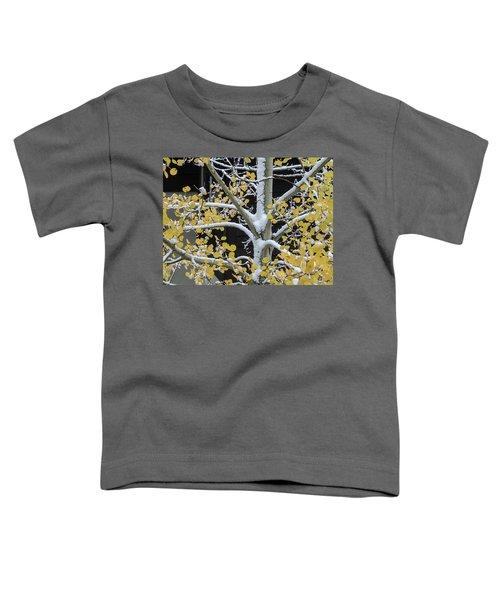 Aspen Snow Toddler T-Shirt