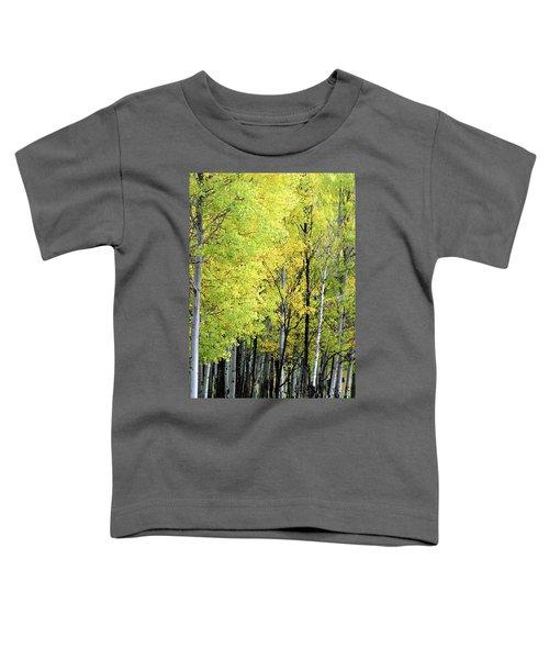 Aspen Splendor Toddler T-Shirt