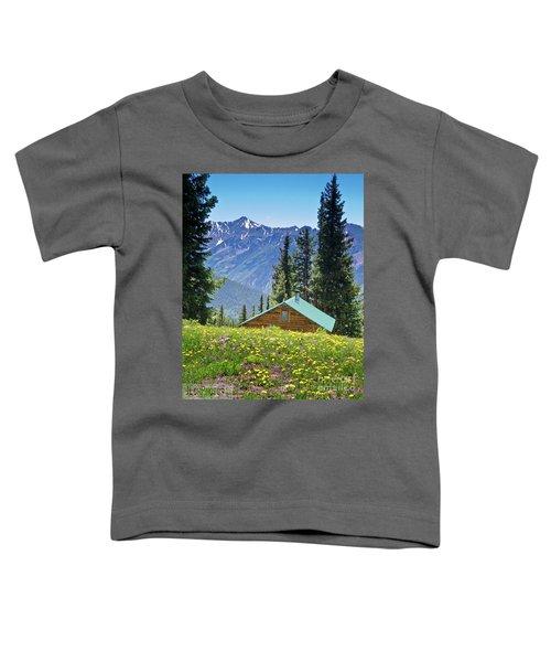 Aspen Spring Toddler T-Shirt