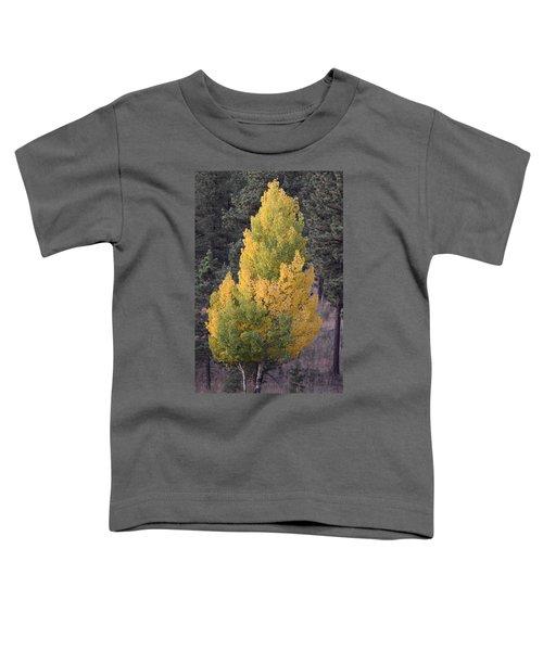 Aspen Tree Fall Colors Co Toddler T-Shirt