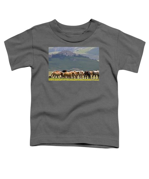 Castelluccio Di Norcia, Parko Nazionale Dei Monti Sibillini, Italy Toddler T-Shirt by Dubi Roman
