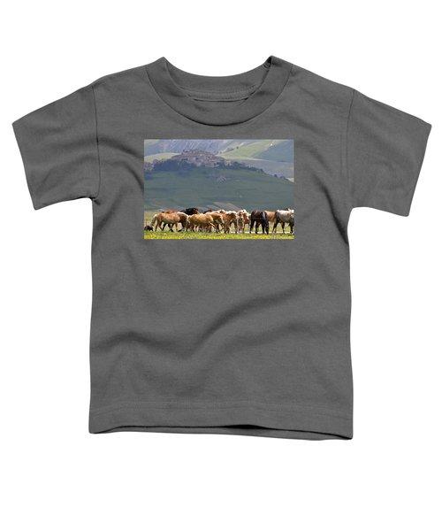 Castelluccio Di Norcia, Parko Nazionale Dei Monti Sibillini, Italy Toddler T-Shirt