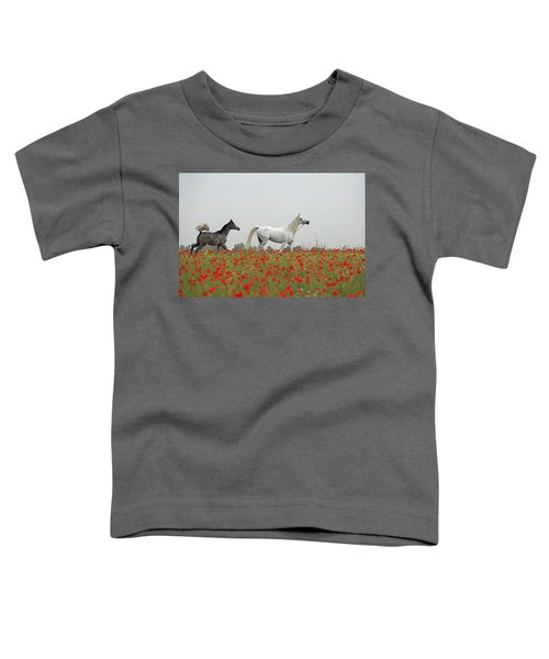 At The Poppies' Field... Toddler T-Shirt by Dubi Roman
