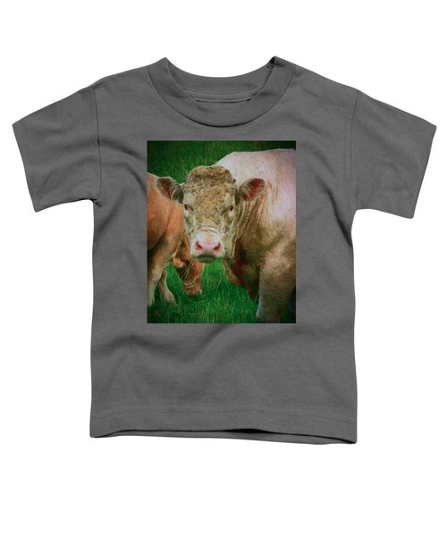 Attention  Toddler T-Shirt