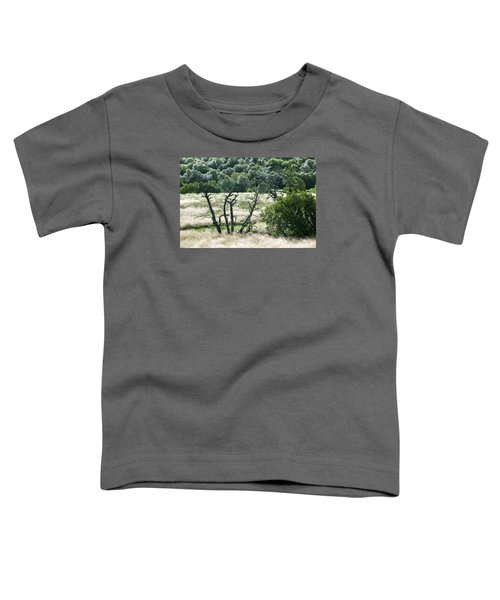 Autumn And Grass In Isle Of Skye, Uk Toddler T-Shirt by Dubi Roman