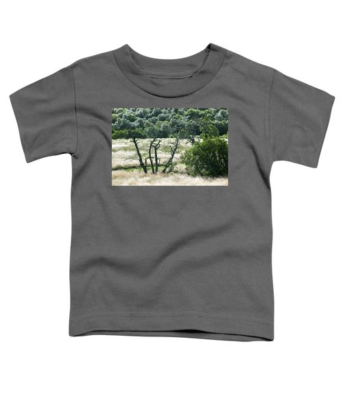 Autumn And Grass In Isle Of Skye, Uk Toddler T-Shirt