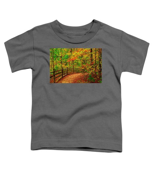 Autumn Bend - Allaire State Park Toddler T-Shirt