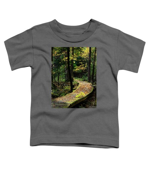 Autumn Boardwalk Toddler T-Shirt
