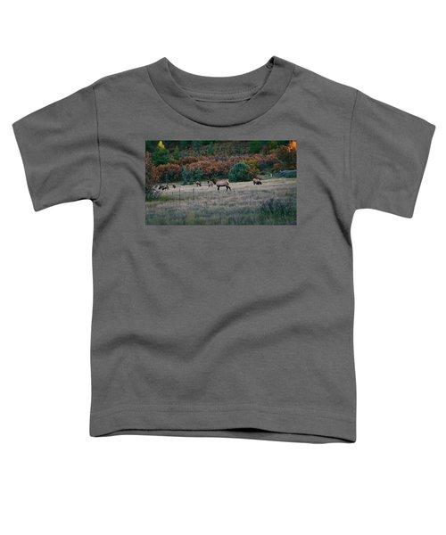 Autumn Bull Elk Toddler T-Shirt