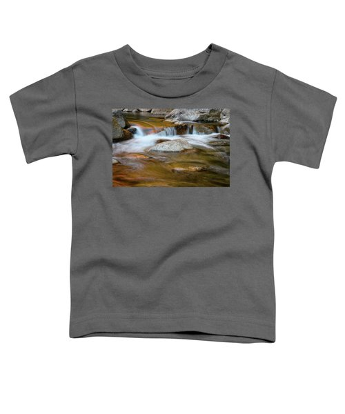 Autumn Cascade Nh Toddler T-Shirt