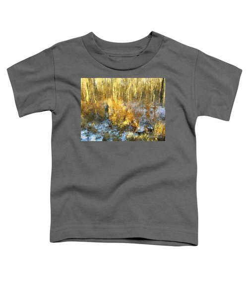 Autumn Gold  Toddler T-Shirt