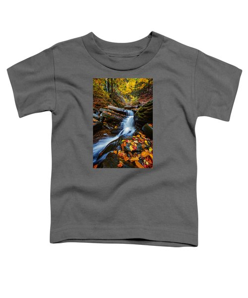Autumn In The Catskills Toddler T-Shirt