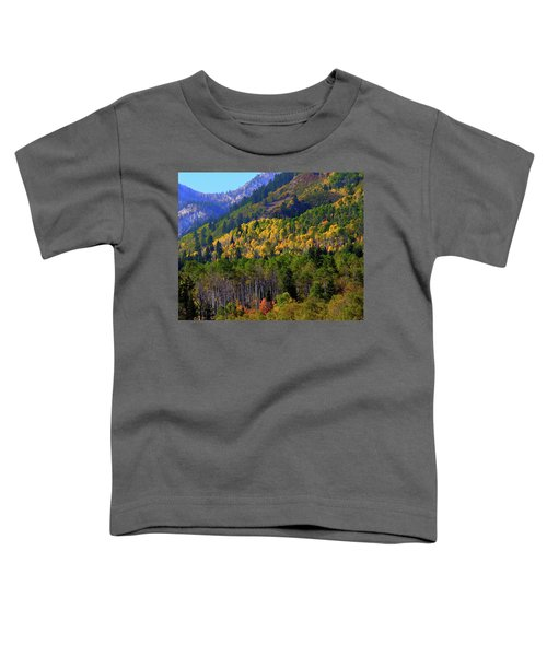 Autumn In Utah Toddler T-Shirt