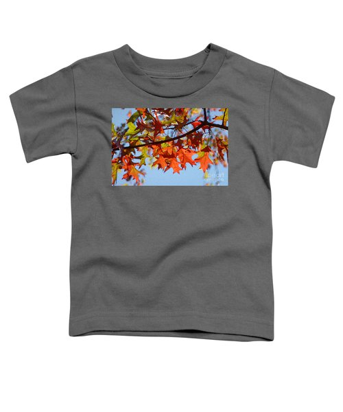 Autumn Leaves 16 Toddler T-Shirt