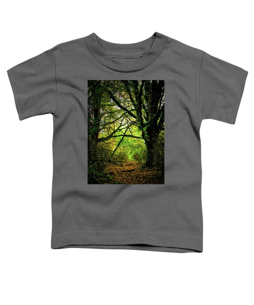 Toddler T-Shirt featuring the photograph Autumn Light by David Patterson