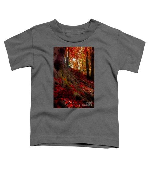 Autumn Light Toddler T-Shirt