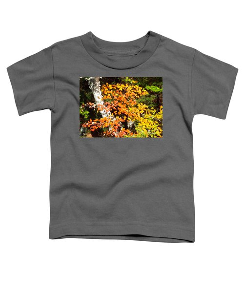 Autumn Maple Toddler T-Shirt