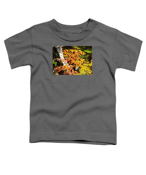 Autumn Maple Toddler T-Shirt