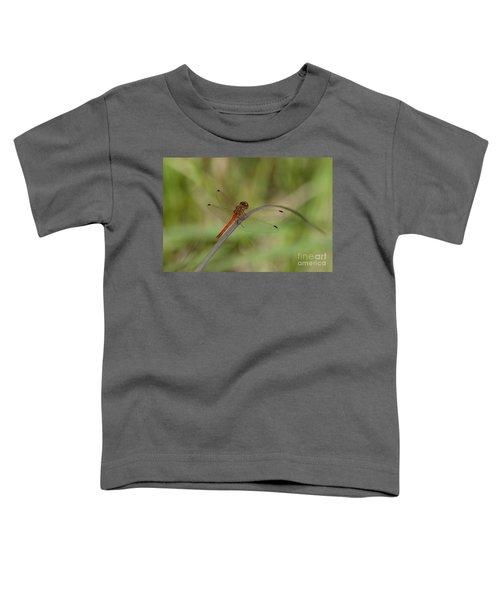 Autumn Meadowhawk Toddler T-Shirt