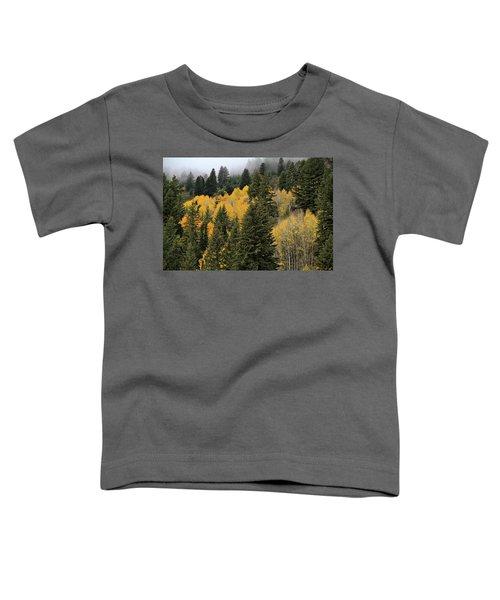 Autumn Mist, Owyhee Mountains Toddler T-Shirt