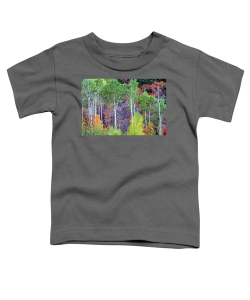 Autumn Mix Toddler T-Shirt