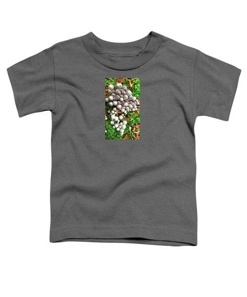 Autumn Mushrooms Toddler T-Shirt by Nareeta Martin