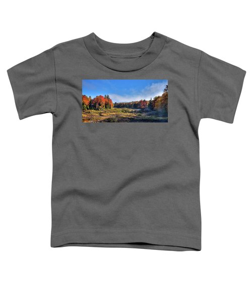Toddler T-Shirt featuring the photograph Autumn Panorama At The Green Bridge by David Patterson