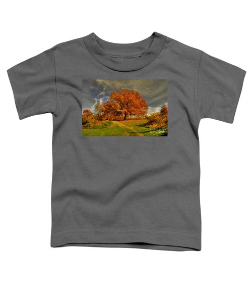 Autumn Picnic On The Hill Toddler T-Shirt