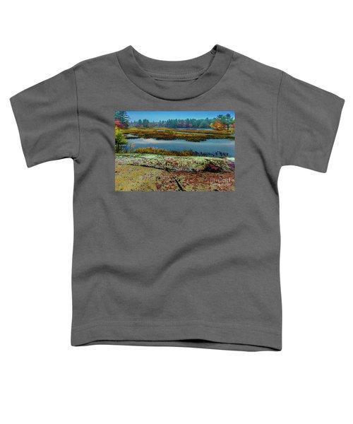 Autumn Rain 2 Toddler T-Shirt