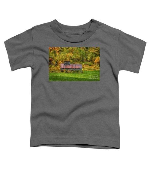 Autumn Rain 3 Toddler T-Shirt