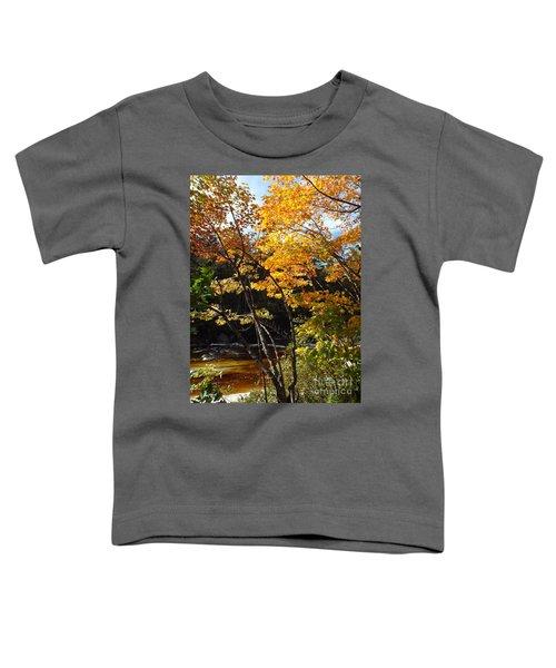 Autumn River Toddler T-Shirt
