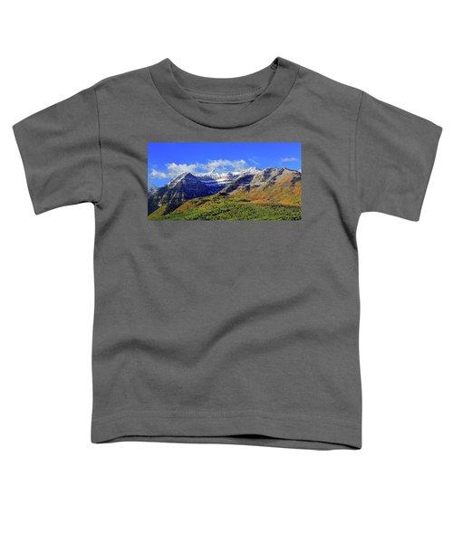 Autumn Snow On Timp Toddler T-Shirt