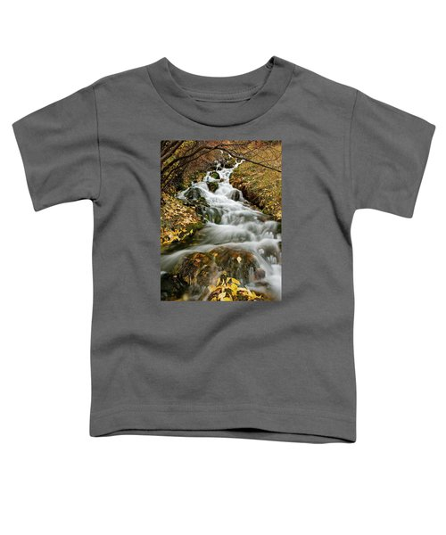 Autumn Waterfall Toddler T-Shirt