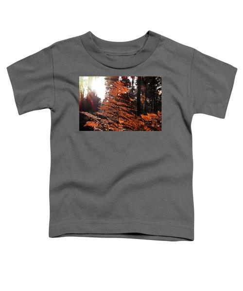 Autumnal Evening Toddler T-Shirt