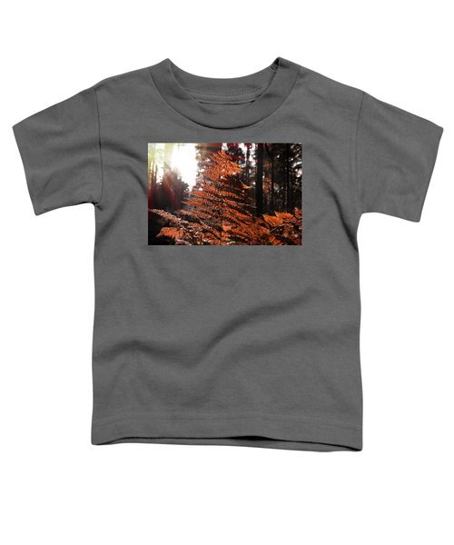 Autumnal Evening Toddler T-Shirt