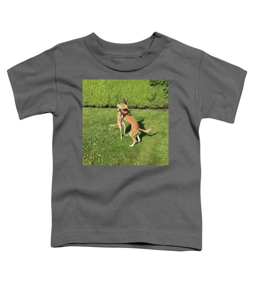 Ava The Saluki And Finly The Lurcher Toddler T-Shirt