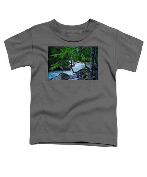Avalanche Creek Toddler T-Shirt