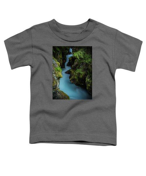 Avalanche Creek- Glacier National Park Toddler T-Shirt