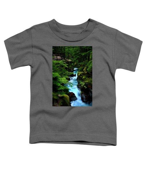 Avalanche Creek Waterfalls Toddler T-Shirt