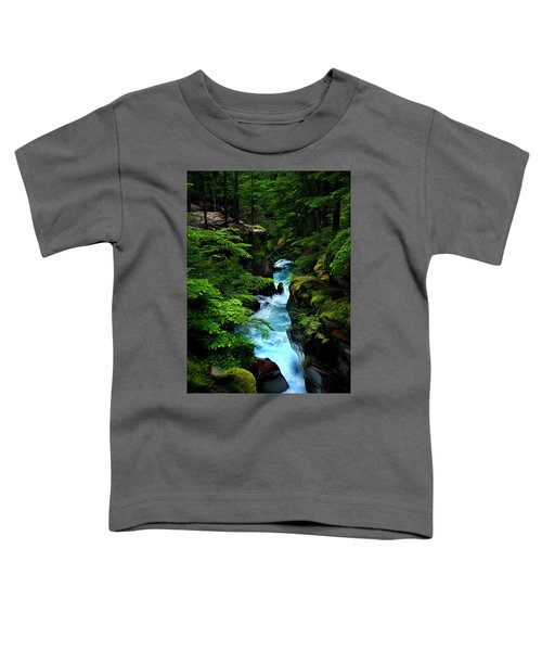 Avalanche Creek Waterfalls Toddler T-Shirt