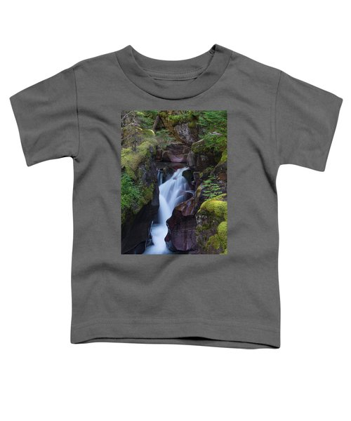 Avalanche Gorge 3 Toddler T-Shirt by Gary Lengyel