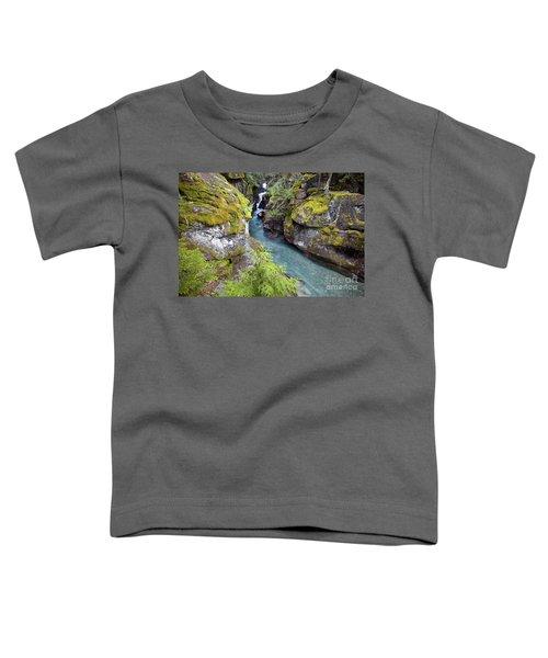 Avalanche Gorge In Glacier National Park Toddler T-Shirt