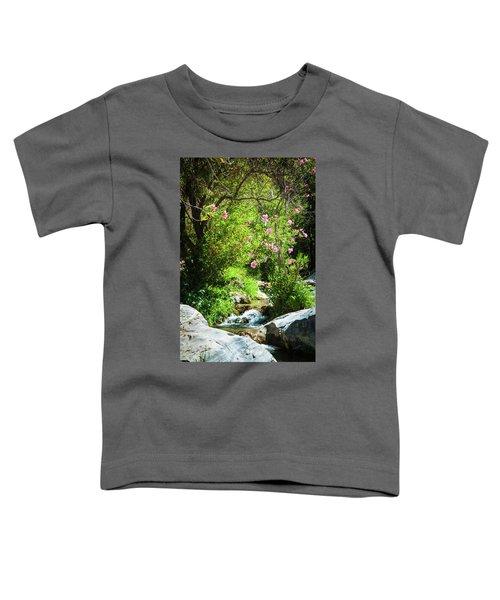 Babbling Brook Toddler T-Shirt