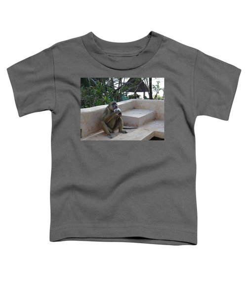 Baboon With A Sweet Tooth Toddler T-Shirt by Exploramum Exploramum