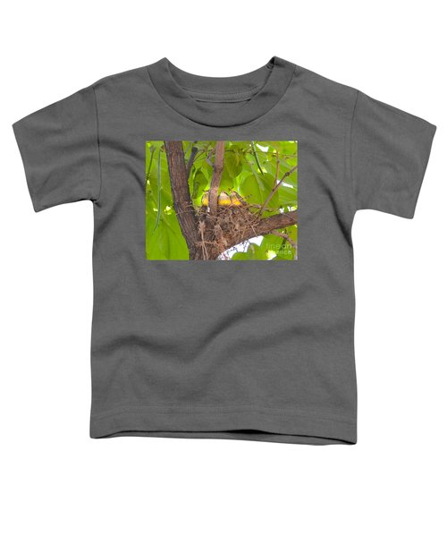 Baby Birds Waiting For Mom Toddler T-Shirt