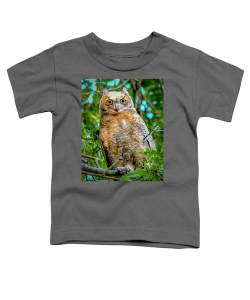 Baby Great Horned Owl Toddler T-Shirt