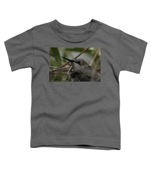 Baby Humming Bird Toddler T-Shirt by Lynn Geoffroy